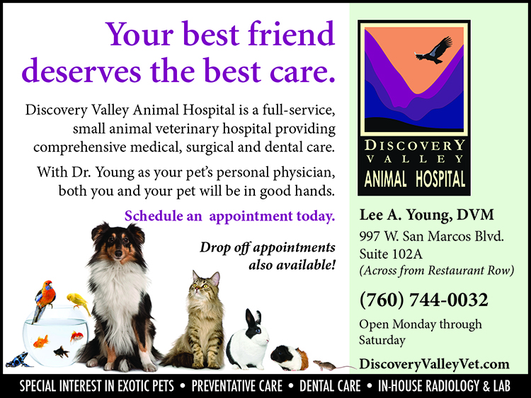 Discovery Valley Animal Hospital